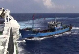 China fishing boat capture (2)